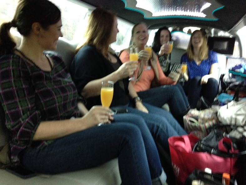Birthday party wine tasting, Charlotte limo winery tour